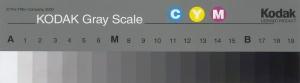 2000 Q13 Eastman Kodak Gray Scale