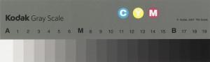 2007 Q13 Eastman Kodak Gray Scale